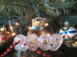 A Beary Merry Christmas!  Photo by mjb2009