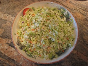GiNormous Amounts of missjunebug's Coleslaw! Photo by mjb2010