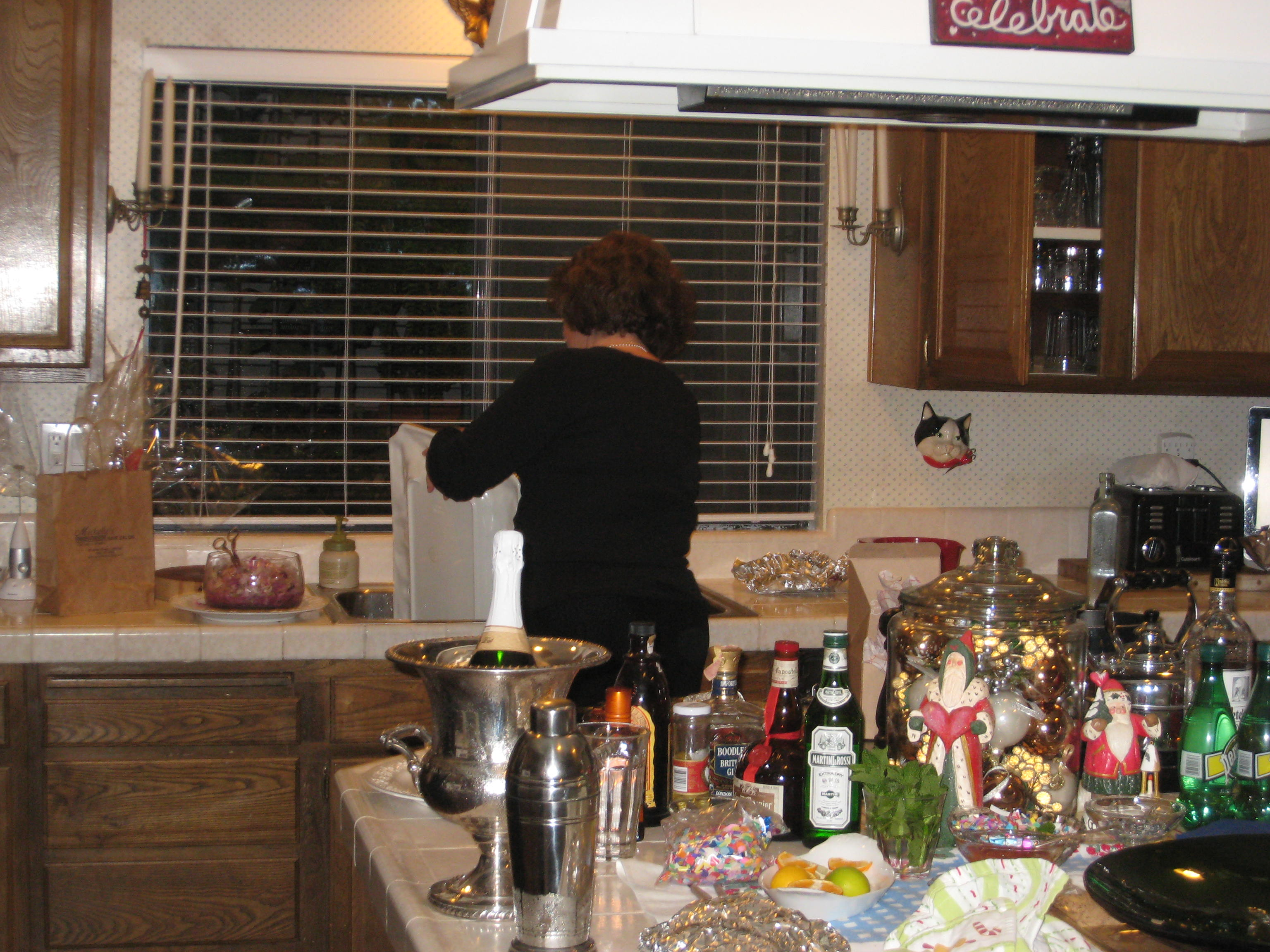missjunebug's P.I.C. prepares last year's Rockin' New Year's Fun! Photo by mjb2009
