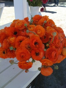 Ridiculously Beautiful: Ranunculus! Photo by mjb2011