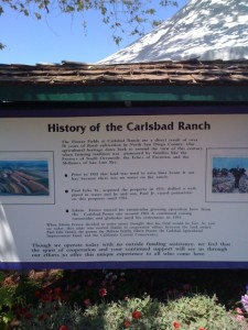 Carlsbad Ranch History in Brief! Photo by mjb2011