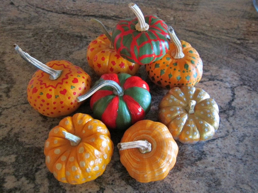 A Plethora of Petite Pumpkins Christmas Style!  Photo by mjb2011