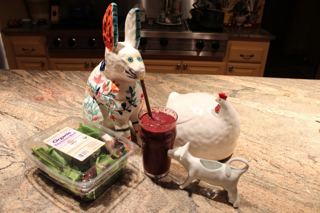 C.J. Rabbit tastes The First Smoothie as White Cow and White Hen look on. Photo by mjb2014